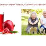 Melograno ha proprietà antinvecchiamento sui muscoli