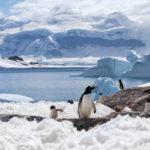 In Antartico sta aumentando il ghiaccio marino grazie a riduzione buco dell'ozono