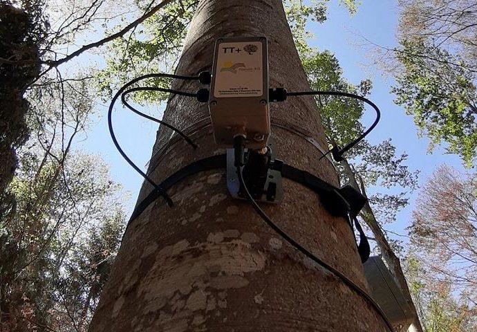 Sensori Nature 4.0