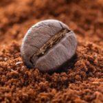 Chicchi di caffè: nella buccia composti fenolici che fanno bene