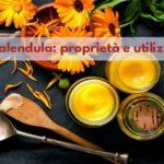 Calendula: proprietà medicinali e cosmetiche