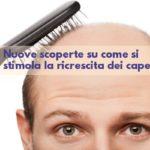 Nuove scoperte su come stimolare la ricrescita dei capelli