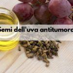 Semi di uva benefici contro il tumore mesotelioma