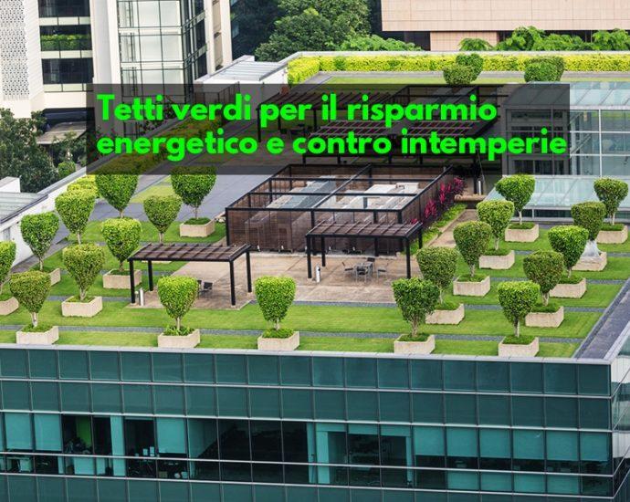 Tetti verdi vantaggi risparmio energetico