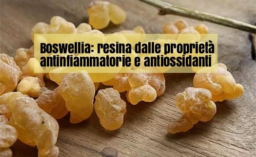 Boswellia antinfiammatorio