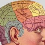 Le emozioni dove si trovano? Trovata l'origine nel cervello