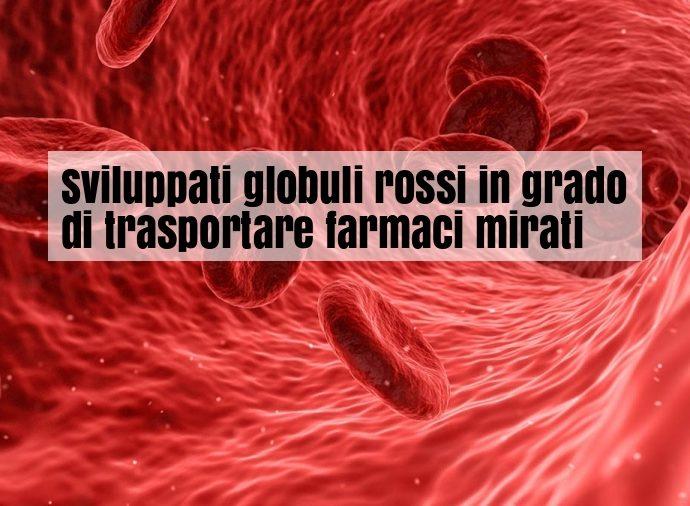 Super globuli rossi trasportano farmaci
