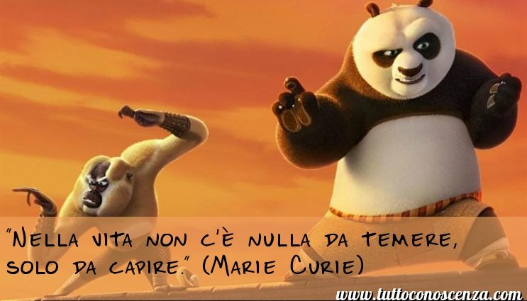 Aforisma sulla vita di Marie Curie