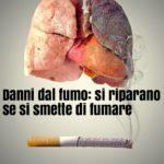 Se si smette di fumare i polmoni tornano come prima?