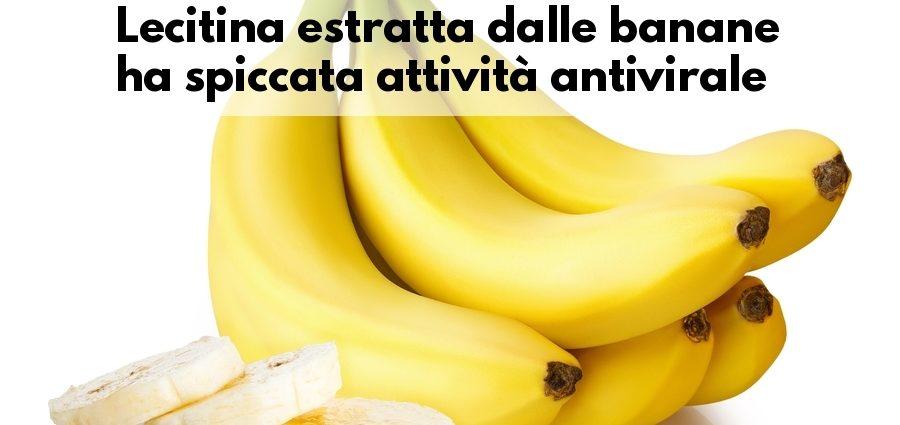 Lecitina banane antivirale