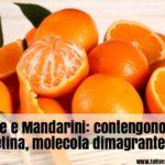 Alimenti per dimagrire: trovata molecola dimagrante in arance e mandarini
