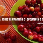 Acerola fonte di vitamina C: proprietà e benefici