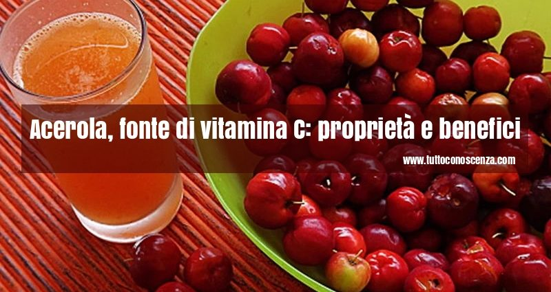 Acerola vitamina C proprietà