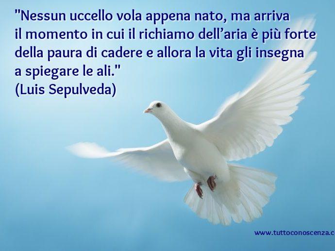 Frase di Luis Sepulveda