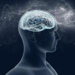 Che cos'è la coscienza e dove si trova? I principi della termodinamica per spiegarla