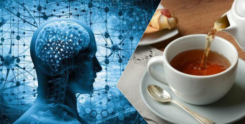 Bere tè fa bene al cervello