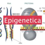 Modificare il DNA con il pensiero: l'epigenetica