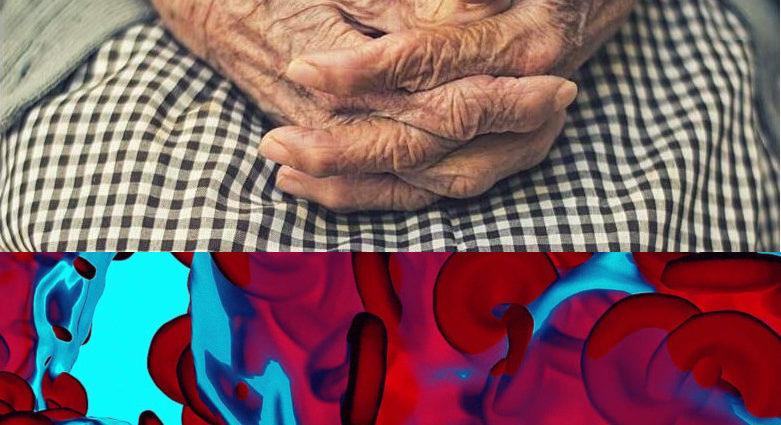 Livelli ferro sangue e longevità