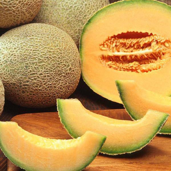 Melone Cantalupo Retato calorie proprietà