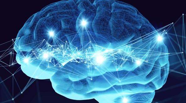 Memoria neuroni immagazzinano ricordi