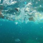 Concentrazioni di microplastiche nel Mar Tirreno