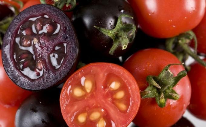 Origine colore pomodoro