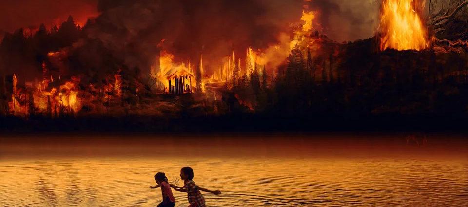 Deforestazione Amazzonia record 2020