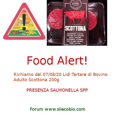 Lidl Tartare Bovino Scottona richiamo Salmonella