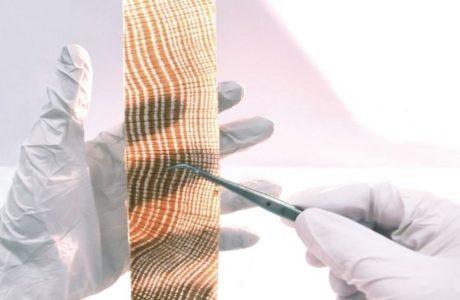 Matetiali bloccano raggi UV il Legno Trasparente