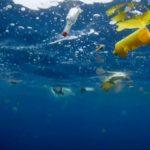 Plastica nell'Oceano Atlantico: quantità 10 volte superiore alle stime