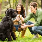 """I cani """"capiscono"""" le parole indipendentemente dalla pronuncia"""