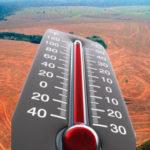 Deforestazione danni aumento temperature
