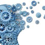 Individuata nel cervello la molecola che aiuta la memoria