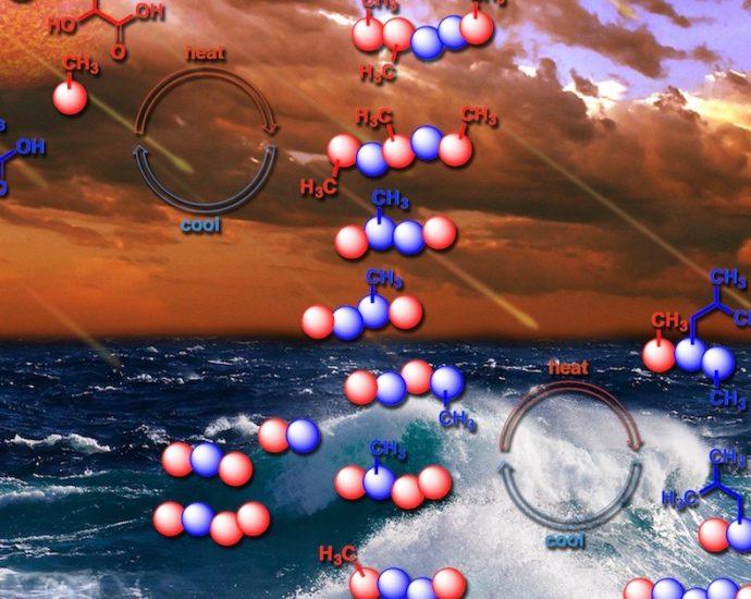 Origine della vita sulla Terra proteina amiloide