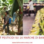 Pesticidi nelle banane: test del K-Tipp rivela quali sono le migliori e le peggiori