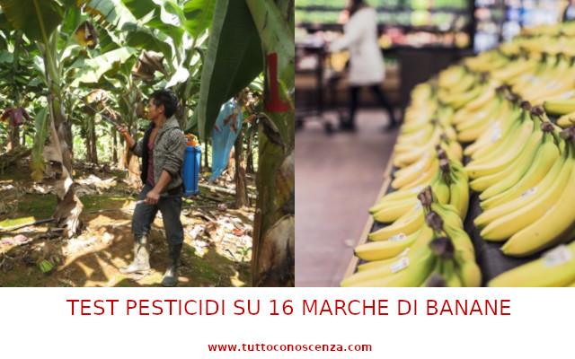 Test pesticidi su banane marche