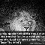 "Frasi dal film ""Into the Wild"""