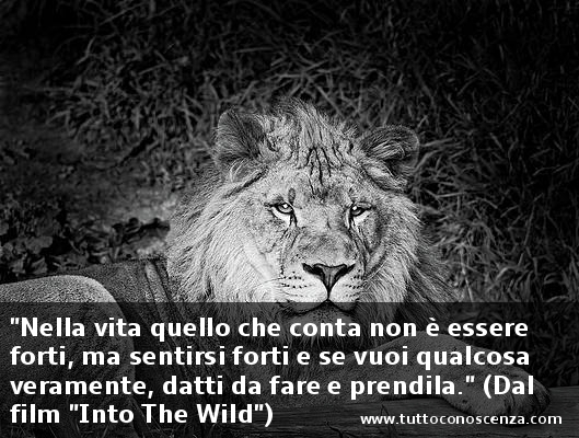 Frasi dal film Into the Wild