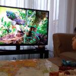 Documentari sulla natura aiutano contro la tristezza e la noia