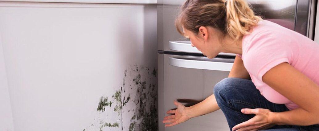 Qualita aria domestica