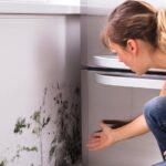 L'importanza della qualità dell'aria domestica per non ammalarsi