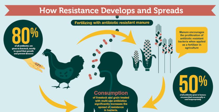 Antibiotico-resistenza cause e soluzioni