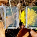 Pannelli solari completamente trasparenti con Biossido di Titanio e Nichel
