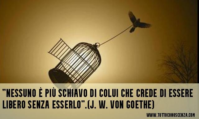 Frase sulla libertà Goethe