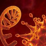 Trovati geni che causano forme più gravi del Covid-19