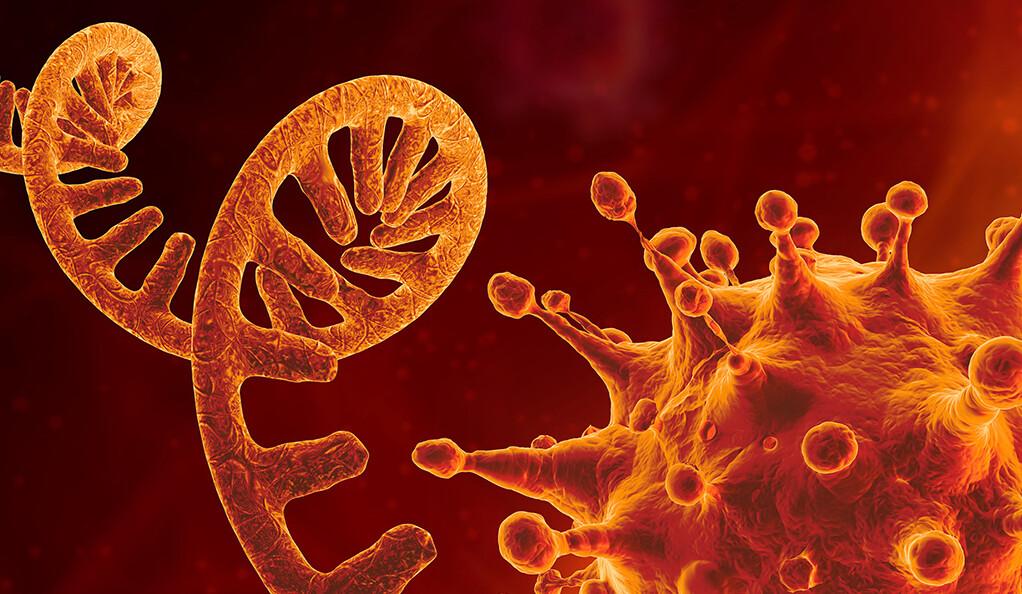 Geni che causano polmonite Covid 19