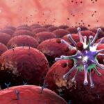 Nuove cure contro tumore al seno e mesotelioma con virus Herpes simplex