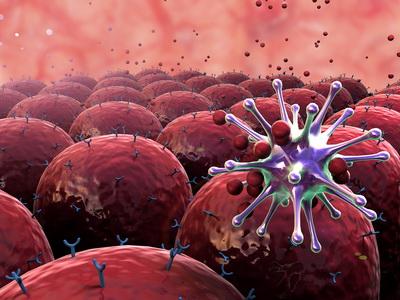 Nuove cure tumori con Herpes simplex oncolitico