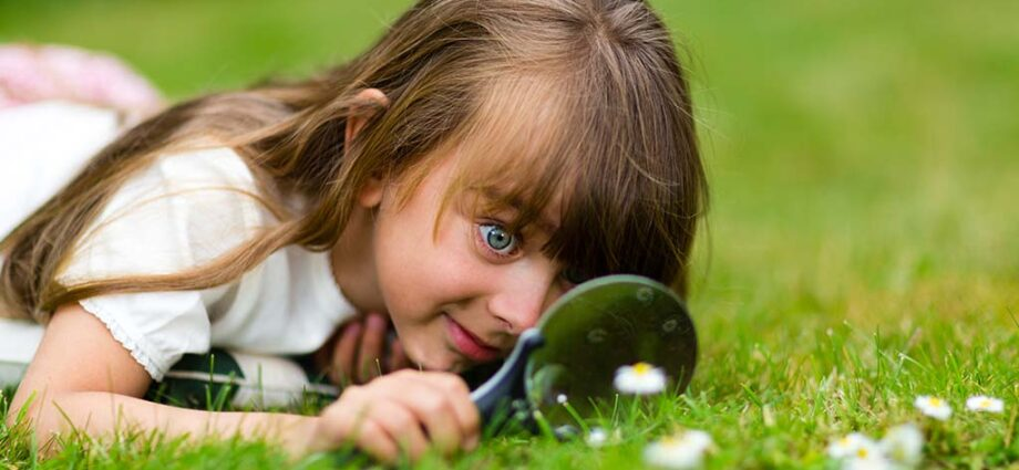 Da dove nasce la curiosità
