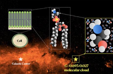 Etanolammina Via Lattea